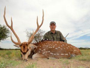 Axis Deer Hunts Argentina