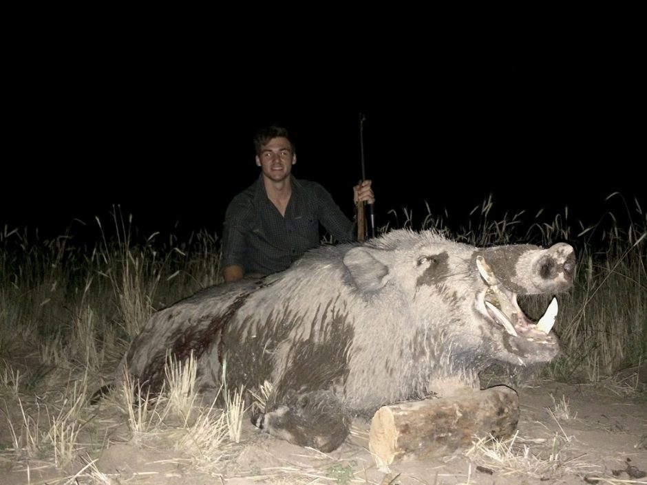 Boar Hunting La Pampa
