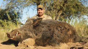 European Boar Hunting Argentina