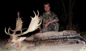 Fallow Deer Hunts Argentina