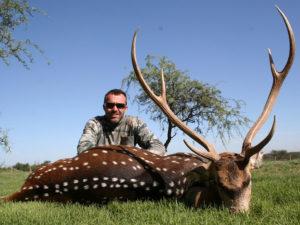 Trophy Axis Deer Hunts Argentina