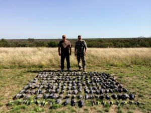 Pigeon Shooting Argentina