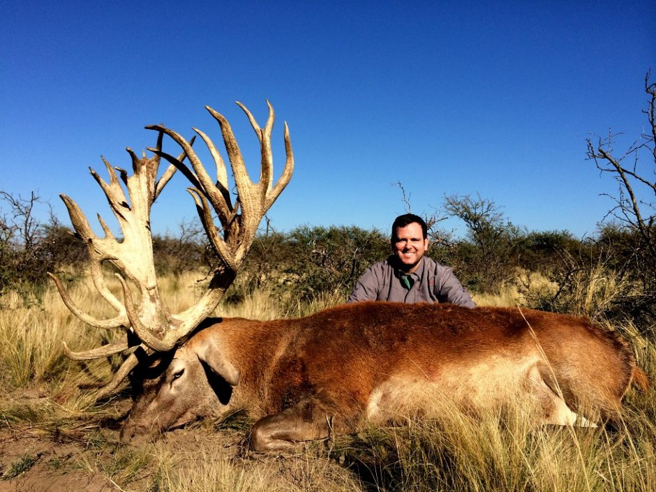 Trophy Red Stag La Pampa