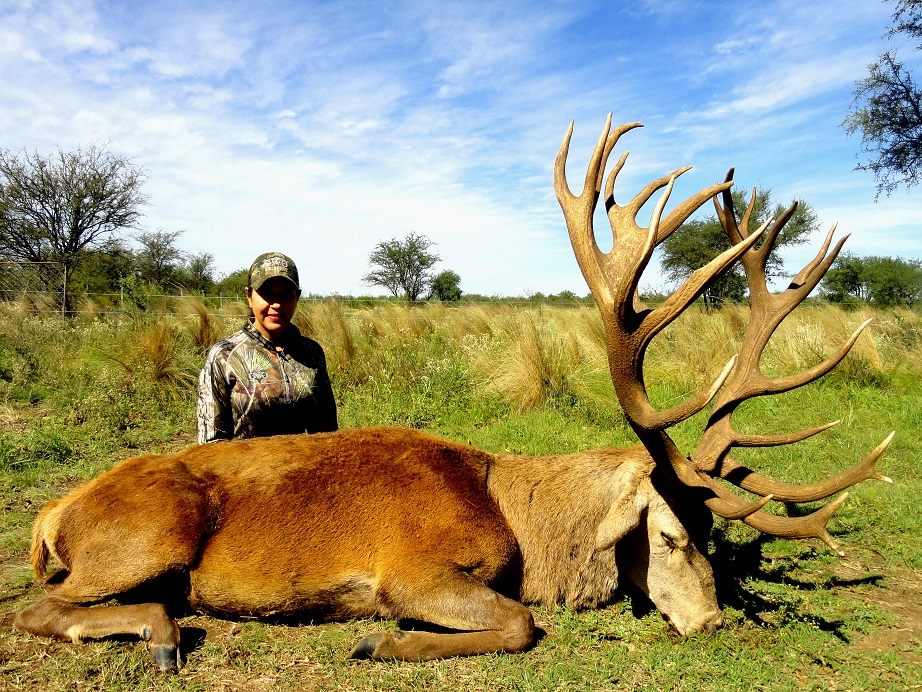 Red Stag Hunts in Argentina