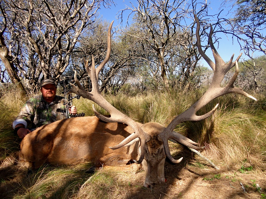 Argentina Red Stag Hunts