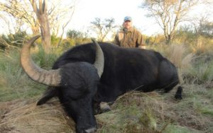 Water Buffalo Trophy Hunting