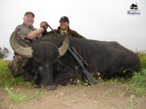 Water Buffalo Hunts Argentina