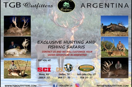 Hunting in Argentina